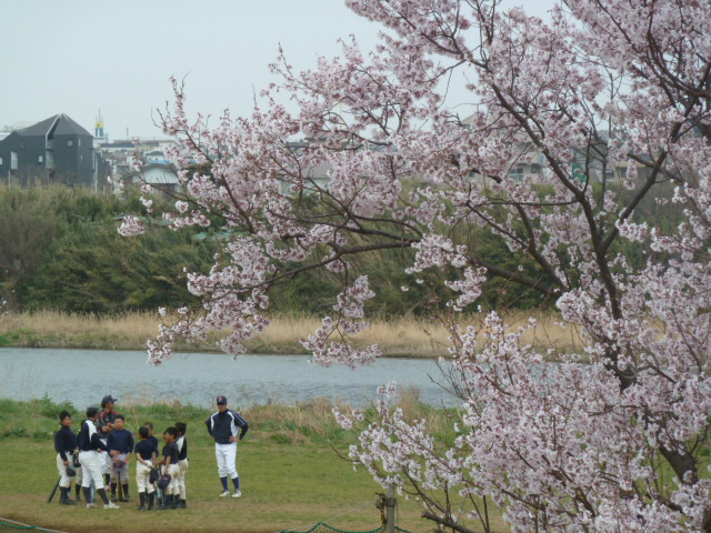 石川町横恵びす温泉